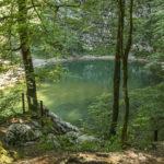 [Marjan Kopač] Divje jezero