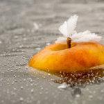[Mirko Kunšič] - Ko jabolko MACzamrzne